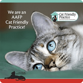 Your Local Cat Friendly Practice